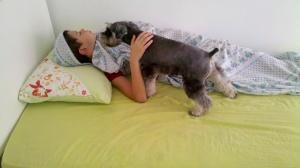 Gohan acordando o Biel