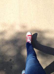 caminhada ibirapuera