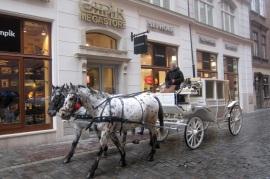 Centro histórico Cracóvia