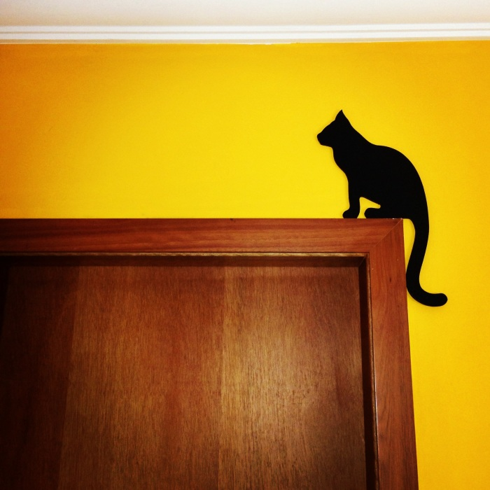 gato soleira porta